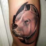 tattoo argentino